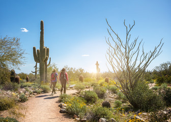 Aluminium Prints Arizona Hikers on a Scottsdale Arizona Desert Trail