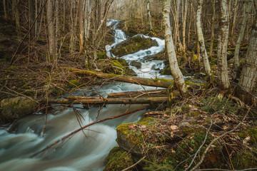 Wodospad kaskadowy w środku skandynawskiego lasu w pobliżu miejscowości Hestvika w Norwegii