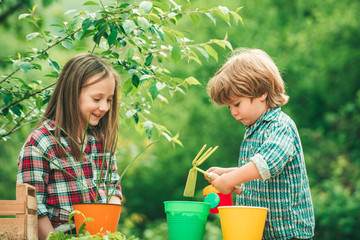 Kids planting flowers in pot. Two Happy children farmers working with spud on spring field.