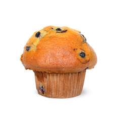 Blueberry muffin or cupcake with paper wrapper. A few blueberries are visible. Isolated on white.