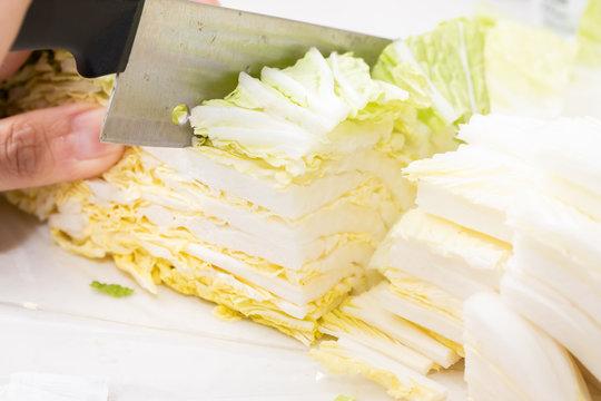 白菜を包丁で切っている