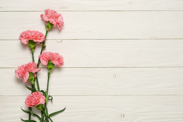 Pink carnation flower bouquet on white wood.