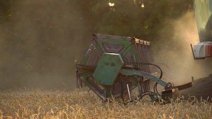 Wall Mural - Close up of combine harvester for harvesting wheat. Slow motion
