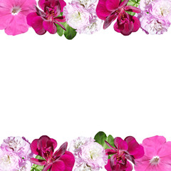 Fototapete - Beautiful floral pattern of pelargonium and petunia. Isolated
