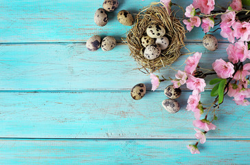 frame with easter eggs, flowers and copy space on wooden background