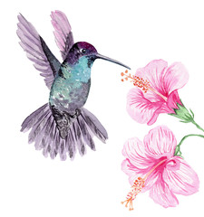 Cute watercolor hand drawn illustration of flowers and birds isolated on a white background, for Valentine's Day greeting card, wedding card, romantic prints and scrapbooking.