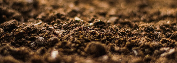 Earth ground texture as background, nature and environment Fotobehang