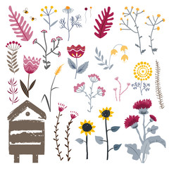 Wall Mural - Meadow herbs isolated on white, vector collection. Doodle plants set