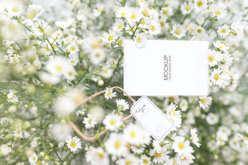 Wedding cards and gypsophila The concept of wedding cards and flowers to decorate White flowers are beautiful and add elegance as well. Is a role model of cards, but beautiful work