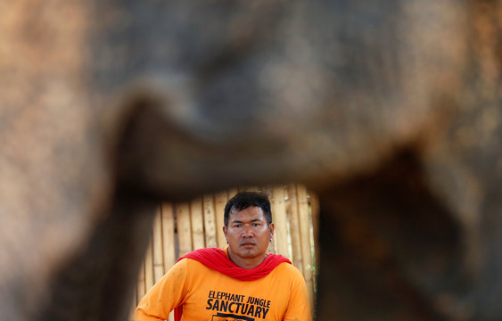 An elephant keeper waits for tourists at empty touristic area, due to fear of coronavirus in Phuket