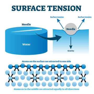 Surface tension explanation vector illustration diagram