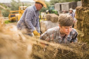 Ranchers stacking hay bales. Bridger, Montana, USA