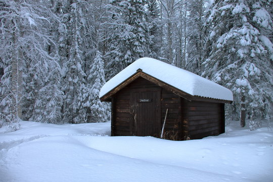 Wooden hut in the swedish forest