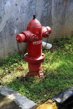 fire hydrant in park