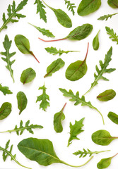 Fototapete - Pattern of fresh lettuce, chard, mizuna, top view isolated on white background.
