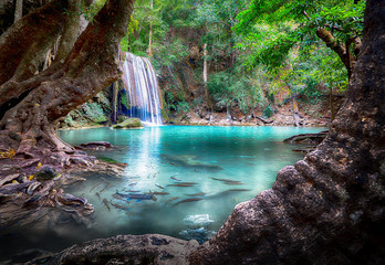 Erawan Waterfall, the main attraction Of Kanchanaburi, Thailand. The point where the Pegas camera is the tree