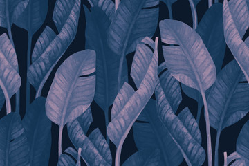 Printed kitchen splashbacks Watercolor Nature Duo tone colored banana leaves seamless pattern. Tropical leaf sketch