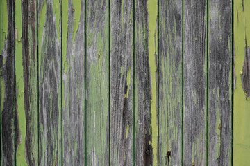 Old green wooden texture background grunge wood ancient wall Wall mural