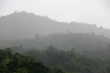 Photo sur Aluminium Gris paysage de brume aux Seychelles