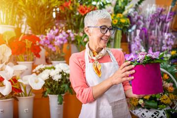 Obraz Senior woman sales flowers in flower shop. Happy smiling mature florist woman having eyeglasses and working at flower shop. Portrait of successful modern florist wearing apron. - fototapety do salonu