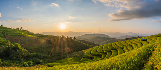 Stores à enrouleur Les champs de riz Rice fields Before harvesting sunset Farmer's house Terraced rice paddy field in Chiang Mai, Thailand.View image panorama