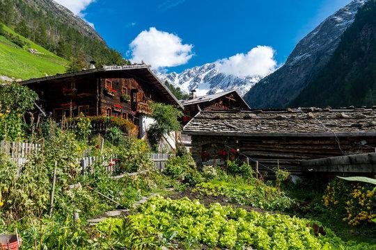 altes Holzhaus Bauernhof in Südtirol mit Gemüsegarten und Blick auf die verschneiten Berge