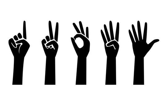 Set of number 1 2 3 4 5 with hand sign isolated on white background. One to five fingers count hand gesture. Communication gestures concept. Vector illustration. Human fingers showing numbers