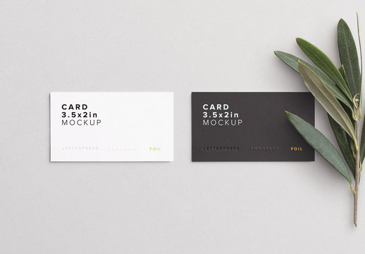 Business Cards with Olive Branch Mockup