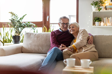 Portrait of a happy senior couple relaxing together at home