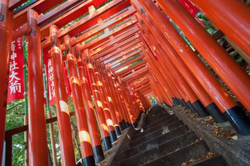 Red Torii gate tunnel at Hie Shrine, Akasaka, Tokyo