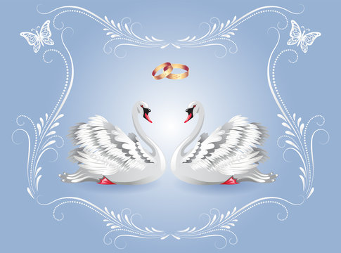 Card with two white swans and luxurious ornament and golden rings for invitations or congratulations with wedding or engagement