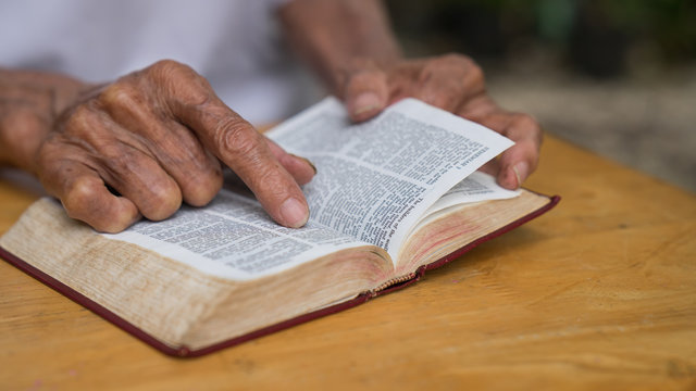 Old man reading her bible while sitting outside