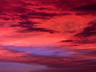 Fotorollo Kastanienbraun sky