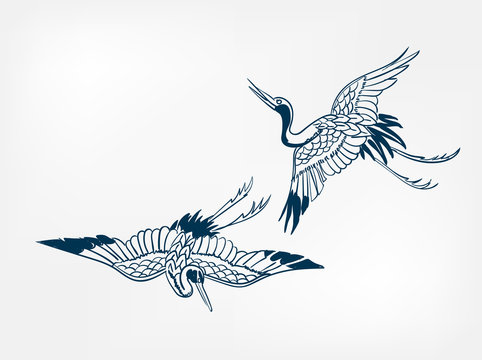 crane japanese vector sketch illustration engraved chinese