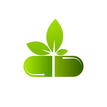 medical herbal pharmacy icon vector illustration design template