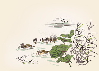 Photo sur Plexiglas Blanc pond ducks burdock nature landscape view vector sketch illustration japanese chinese line art ink card background