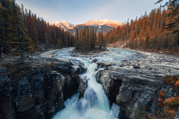 Aluminium Prints Forest river Sunwapta Falls is pair of the Sunwapta river in autumn forest at sunset. Icefields Parkway, Jasper national park