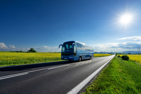 Blue bus driving on the asphalt road between the yellow flowering rapeseed fields under radiant sun in the rural landscape