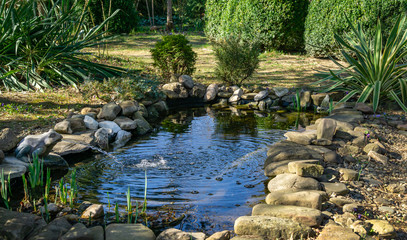 Beautiful small garden pond with a frog-shaped fountain and stone shores in spring. Selective focus. Nature concept for design.