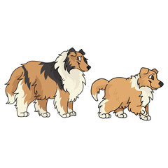 Keuken foto achterwand Honden Cute cartoon rough collie and puppy dog vector clipart. Pedigree kennel sheepdog for dog lovers. Purebred domestic for pet parlor illustration mascot. Isolated canine fluffy. EPS 10.