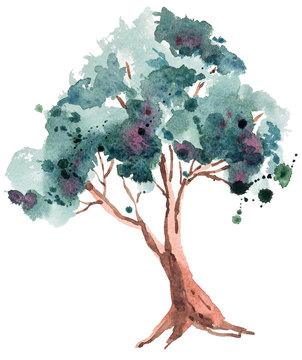 Watercolor hand painted tree on white background. Cute illustration on white background. Can be used for print, blog, poster, greeting cards, wedding invitations