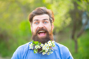 Blossom beard. Funny head portrait of a bearded man looking at the camera over spring blossom background.