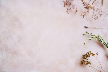 Herbs and dried flowers on pastel pink backdrop. Copy space. Romantic floral background.