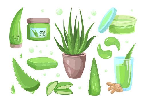 Aloe vera cartoon style icons. Succulent, tropical plant vector illustrations, organic drink, cosmetic.
