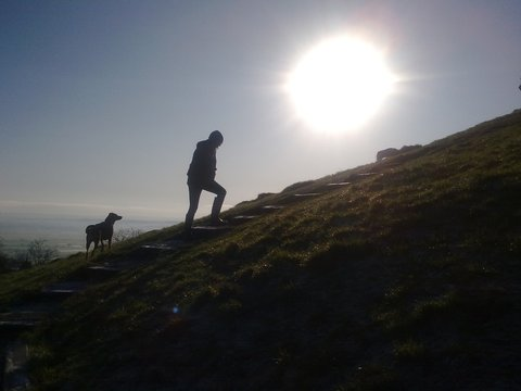 Silhouette Of Man With Dog Walking On Steps On Hill
