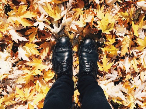 Low Section Of Person Wearing Shoes Standing On Autumn Leaves