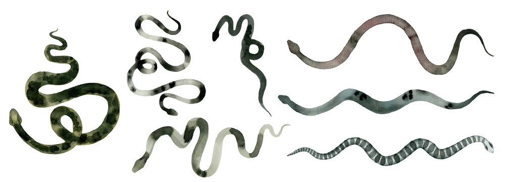 green different snakes, set of abstract watercolor, hand drawing, illustration