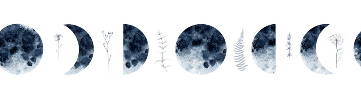 Watercolor seamless border pattern with moon phases medicinal herbs, lavender, mint, fennel, fern and more. For various decor.