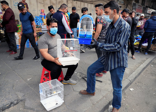 Men wear protective masks, following the outbreak of coronavirus, as they sell animals at the Ghazal pet market in Baghdad
