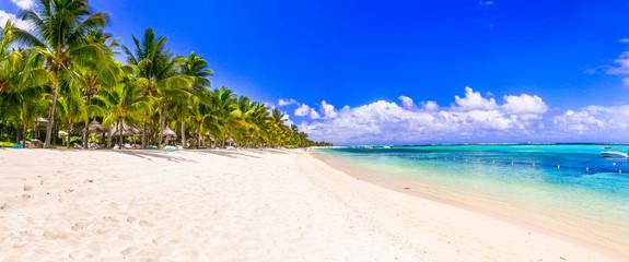 Wall Mural - Best tropical beach destination - paradise island Mauritius, Le Morne beach